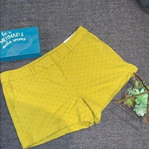 Size 10 new with tag Loft shorts.